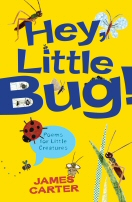 Hey, Little Bug! book cover